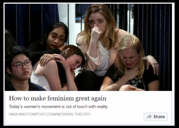 https://www.washingtonpost.com/news/in-theory/wp/2016/12/05/how-to-make-feminism-great-again/?utm_term=.010cb683c076