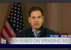 Marco Rubio on Omnibus Bill Fox News