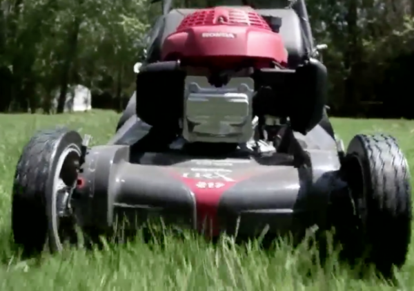 http://abc3340.com/news/local/business-license-required-for-teens-to-cut-grass