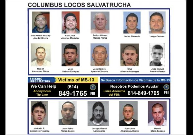 Authorities Arrest 13 Alleged MS-13 Gang Members in Ohio