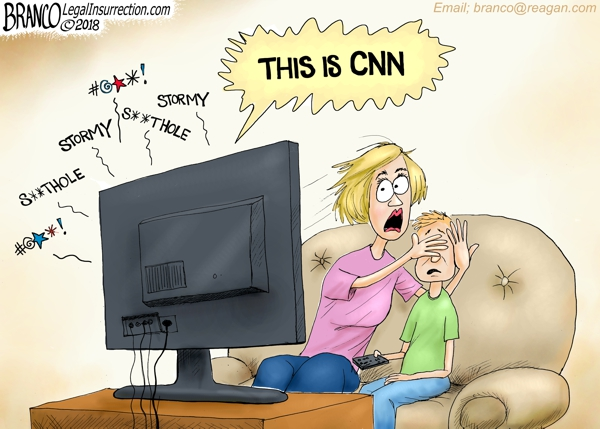 Image result for branco cartoons trump and stormy davis